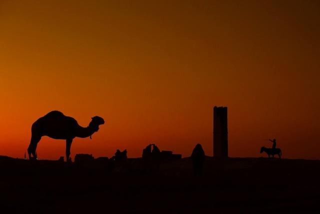 Her An Harran Foto Maraton 2 yarışması sonuçlandı- işte kazanan isimler
