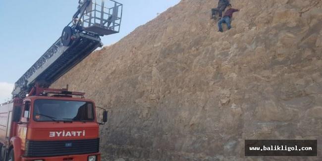 Şanlıurfa'da kayalıklarda mahsur kalan genç kurtarıldı.