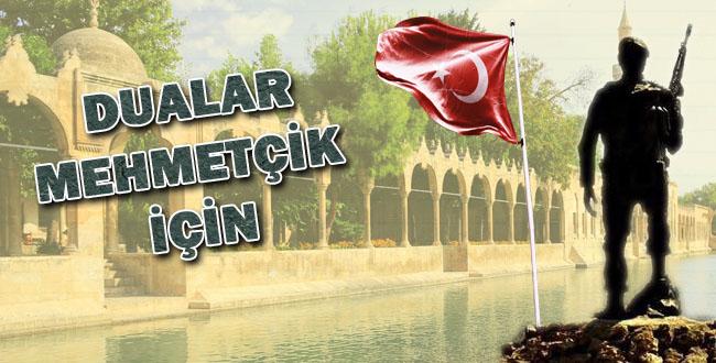 Şanlıurfa'dan Zeytin Dalı Harekatı'na tam destek