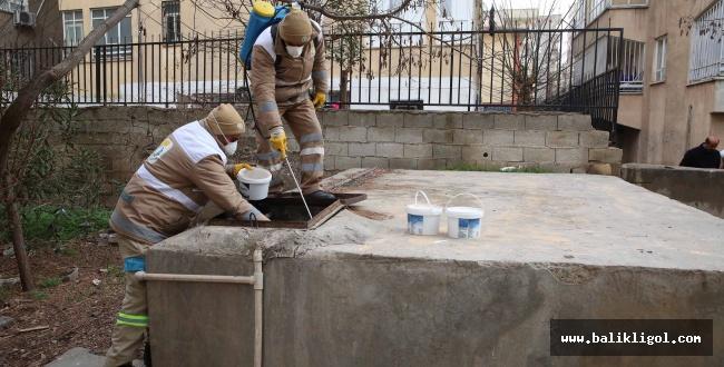 Selahattin Eyyubi'de kışlakla mücadele
