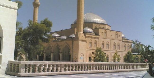 Urfa'da camide kesik insan bacağı bulundu