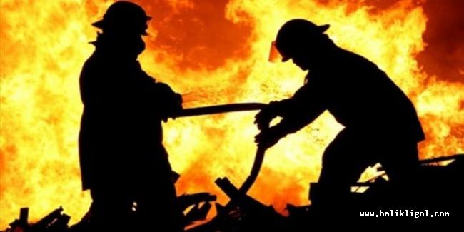 Urfa'da yangın bir evi küle çevirdi