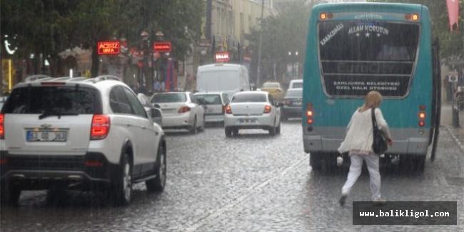 Yağmur Urfa'da çiftçiyi sevindirdi, İşte metrekareye düşen yağmur miktarı