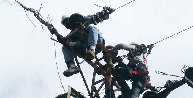 DEDAŞ Borçlu Çiftçilerin Elektriğini Kesiyor