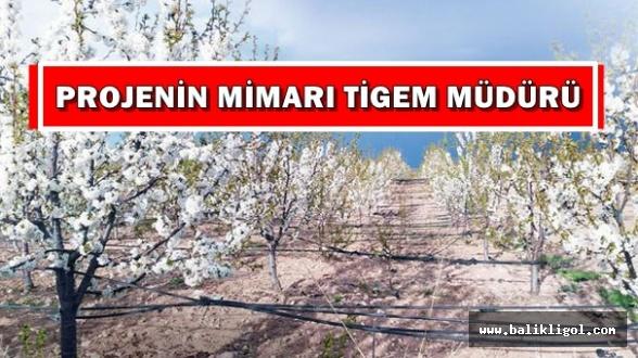 Köyde işsizliği bitiren proje Urfa'da uygulanır mı?