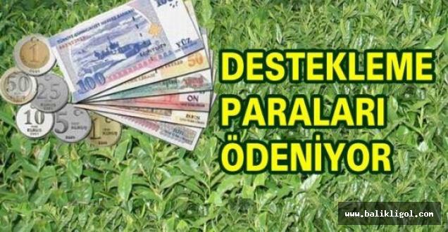 Çiftçilere Müjde! 52 milyon TL'lik destekleme ödemesine yarın
