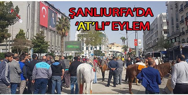 Şanlıurfa'da At'lı eylem
