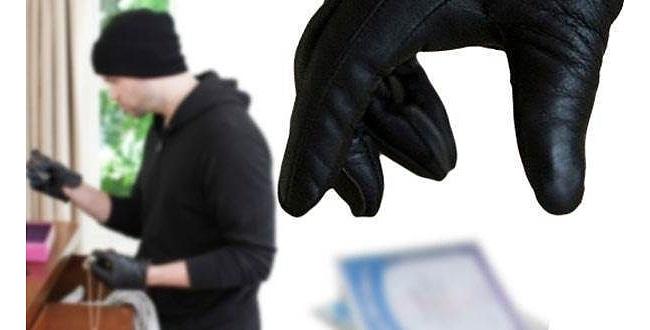 Şanlıurfa'da hırsızlık çetesi çökertildi