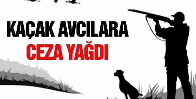 Şanlıurfa'da kaçak avcılara ceza yağdı