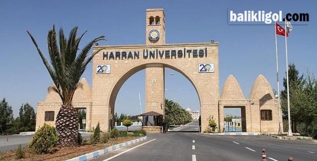 Harran Üniversitesi Rektörü kim olacak? YÖK'ten flaş hamle