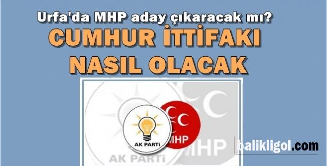 MHP AK Parti İttifakı Urfa'da nasıl olacak? MHP Aday Çıkaracak mı?