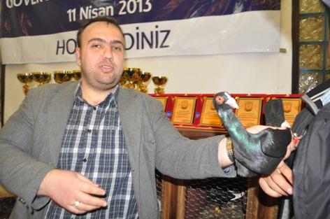 Şanlıurfa'da seçilen en güzel güvercin bir araba fiyatına VİDEO