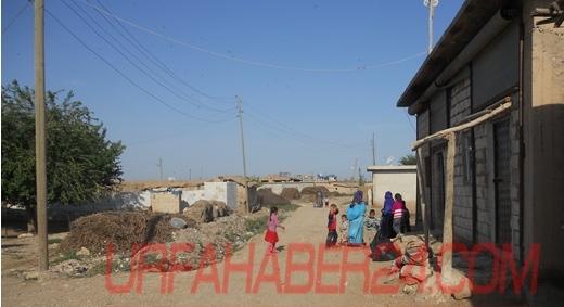 Güzeler'de Kavga; 1 ölü 2 Yaralı, köylüler köyü terk ediyor