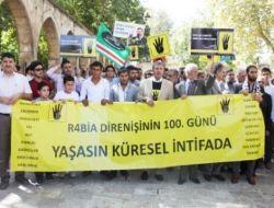 Urfa'dan Mısır'daki darbeye 100. gün protestosu