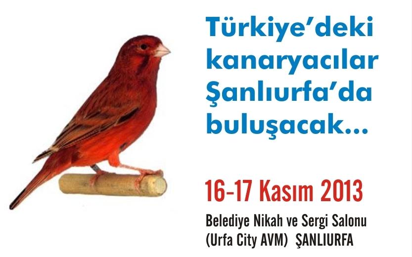 Kafes kuşları Şanlıurfa'da yarışacak