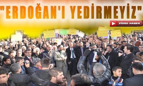 Viranşehir'den Başbakan Erdoğan'a Destek