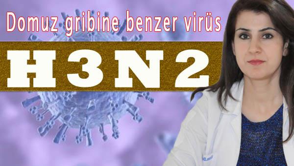 H3N2 Virüsünden korunmanın yolları