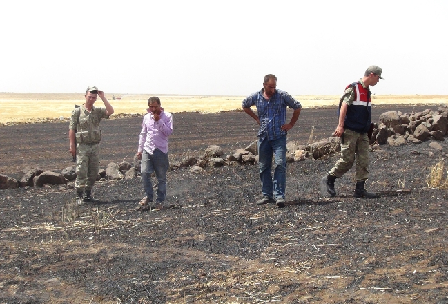 Siverek'te bin dönüm tarım arazi yandı