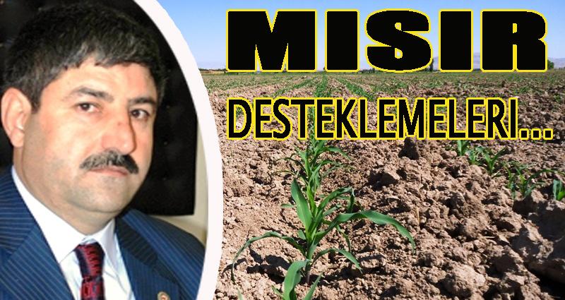 Mısır çiftçisine destekleme müjdesi