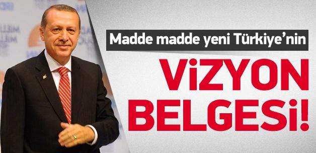 25 Karede Erdoğan'ın vizyon belgesi