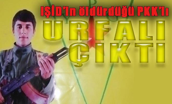 IŞID'le çatışırken ölen Mazlum Urfalı polisin çocuğu çıktı