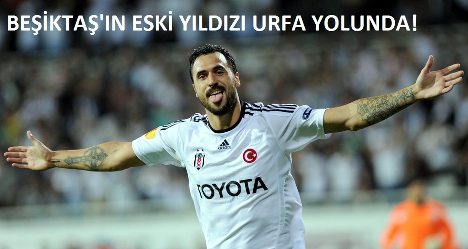 Şanlıurfaspor Beşiktaş'ın yıldızı Almeida'yı alıyor