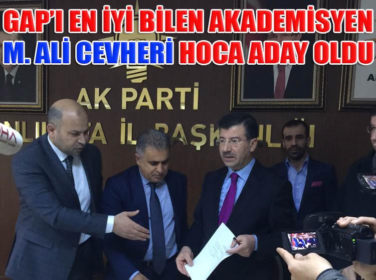 GAP'ın uzmanı Mehmet Ali Cevheri aday adayı oldu