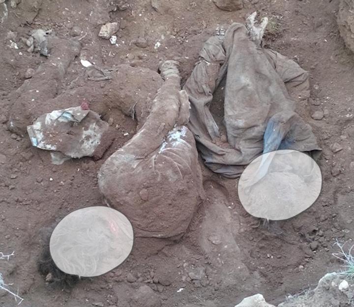 Şanlıurfa'da gömülü iki ceset bulundu
