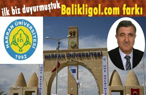 Erdoğan, Harran rektörlüğüne Ramazan Taşaltun'u atadı