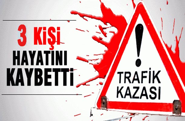 Viranşehir'de otomobil şarampole yuvarlandı