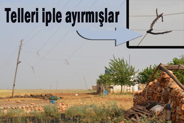 Sarkan Elektrik Telleri az daha köyü yakıyordu