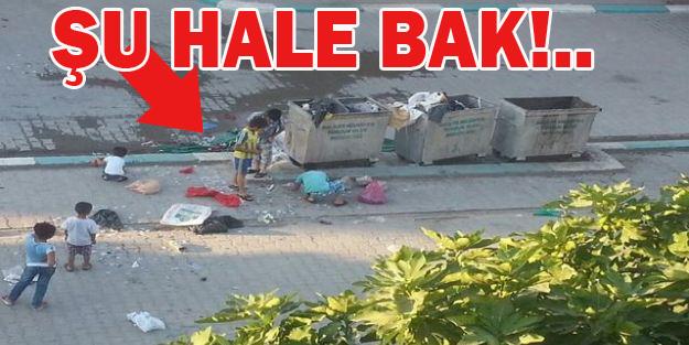 Bu çöp yığınları Haliliye'de birikti