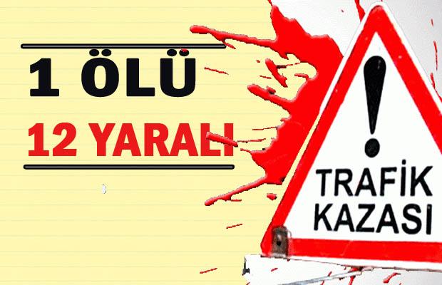 Viranşehir'i Üzen Kaza: 1 ölü 12 yaralı