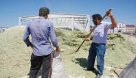 Ağrı'da çiftçiler endişeli