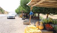 Çatışmalar Şırnak'ta sebze ve meyve tezgahlarını da vurdu