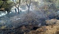 Yangının mağdur ettiği köylüler yardım bekliyor