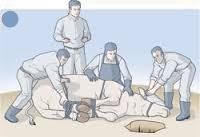 Suruç'ta kurban kesimi kazası:1 ölü