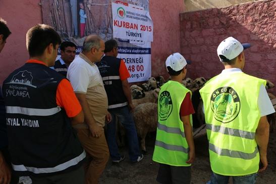 Yardımeli'nden Şanlıurfa'da 4 bin aileye kurban etti