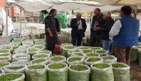 Mardin'de zeytin pazarı kuruldu