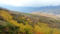Nemrut Krater Gölü Sonbahar manzarasıyla büyülüyor