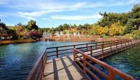 Dülük Baba Tabiat Parkında sonbahar güzelliği