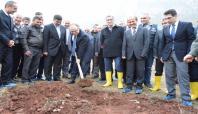 Siirt'te 40 bin adet fıstık fidanı toprakla buluştu
