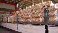 Geçen yıl 5 TL olan patatesin fiyatı 50 kuruşa düştü