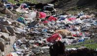 Bin nüfuslu köyde çöpler toplanmıyor