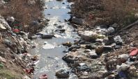 Kozluk Deresi'ndeki kirlilik halk sağlığını tehdit ediyor