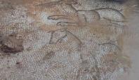 Siverek'te bulunan tarihi mozaikler müzede sergilenecek