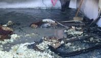 Kızıltepe'de bir evde yangın çıktı