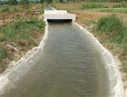 Sulama kanalında kadın cesedi