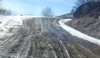 Bingöl'deki köy yolları çamurdan geçilmiyor