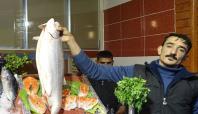 Gaziantep'te balıkçı esnafının yüzü gülüyor